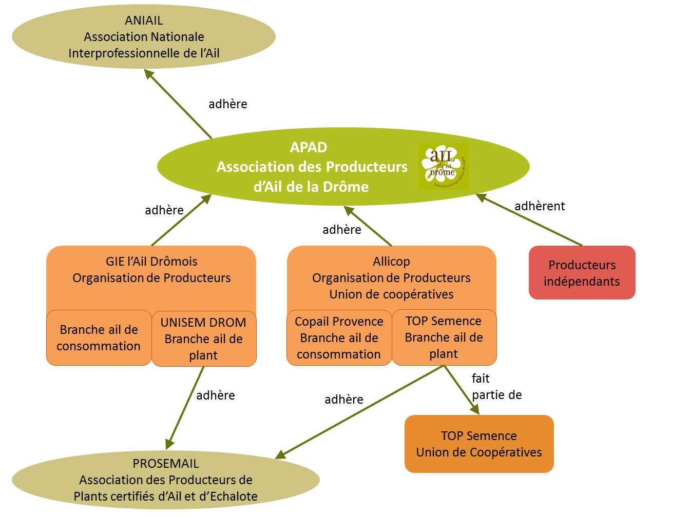 Organigramme APAD & filière